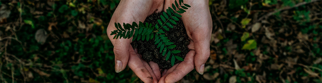 Lande wishes to minimize the environmental impact of its activities, products and services.