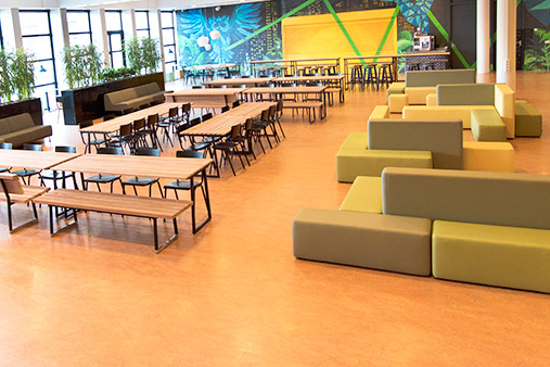 Furnishings canteen Nova College